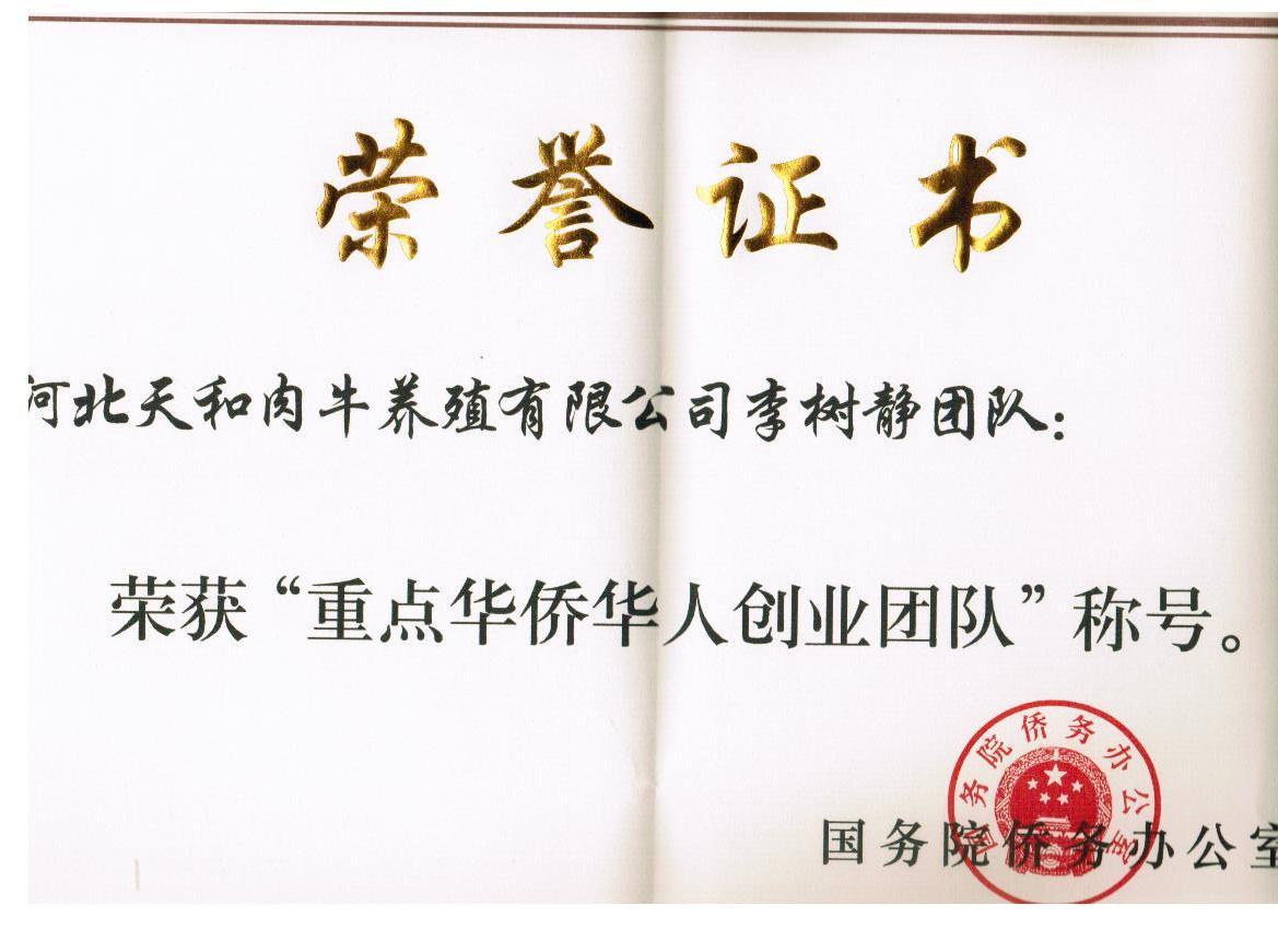 华人华侨创业团队
